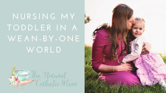 Nursing My Toddler In A Wean By One World