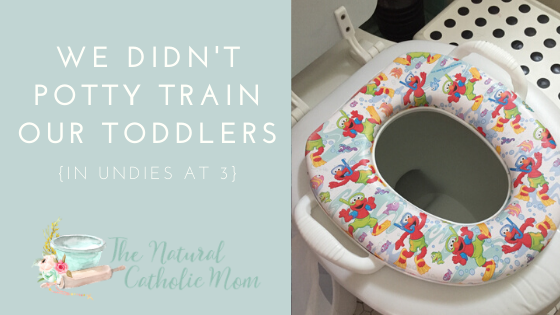 We Didn't Potty Train Our Toddler {Undies at 3}
